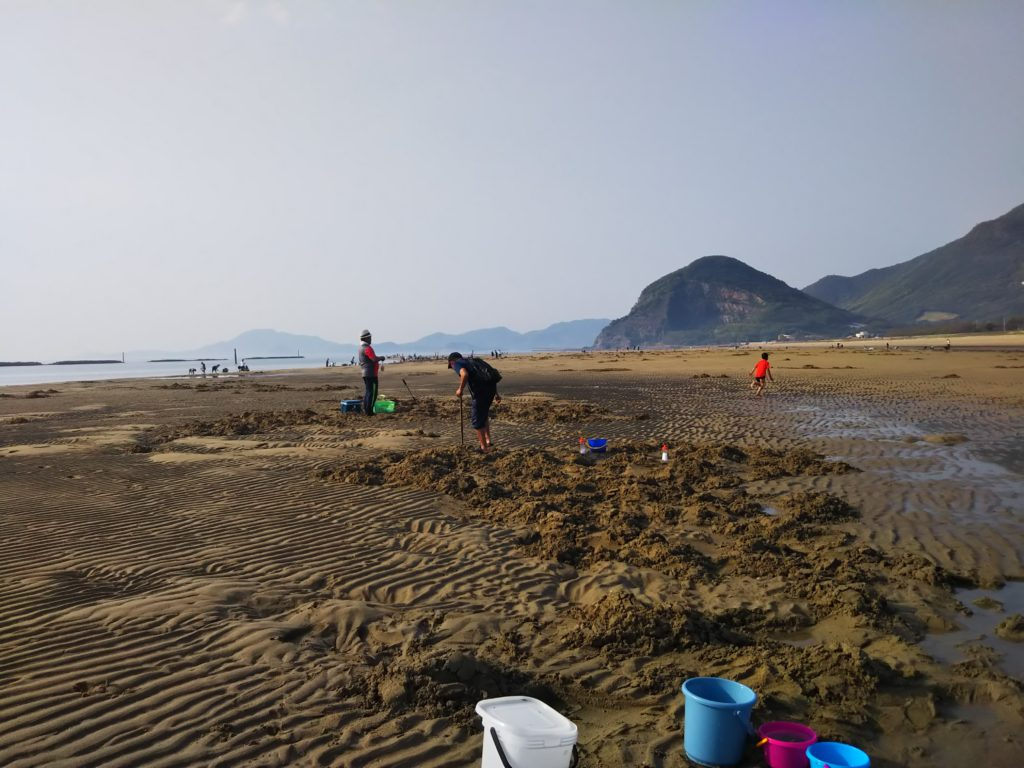 有明浜海水浴場でマテ貝採り