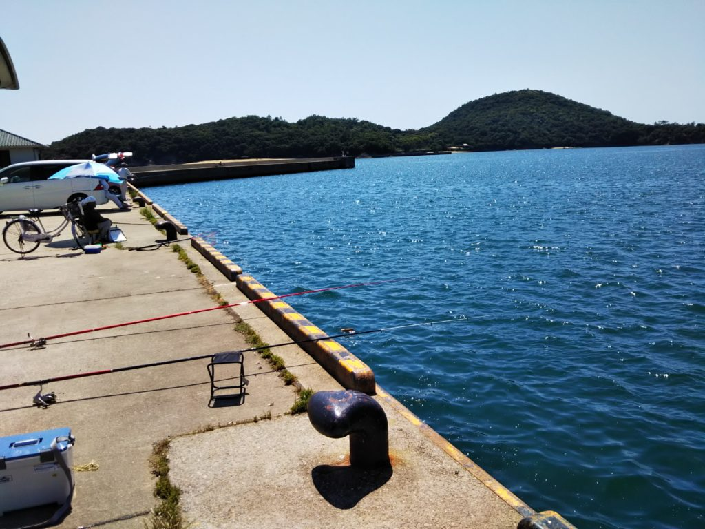 新仁尾港イワシ釣り