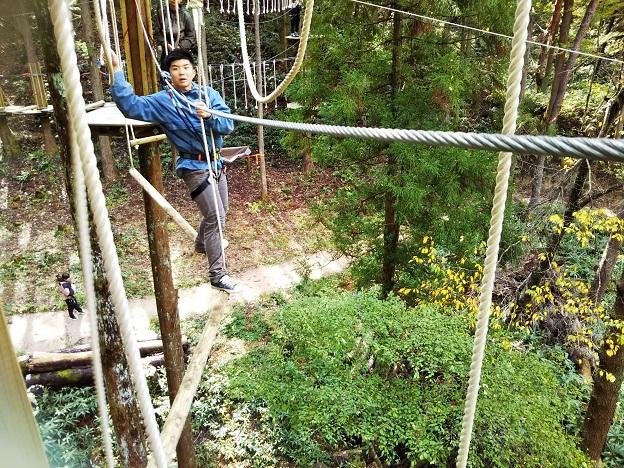 冒険の森のツリーアスレチック